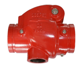 Swing Check Valve - 50GGP